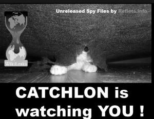 catchlon